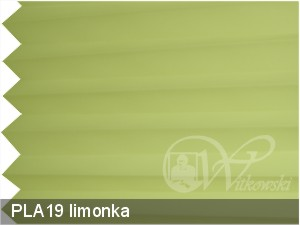 PLA19